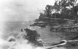 1943-11-01 Battle of Empress Augusta Bay